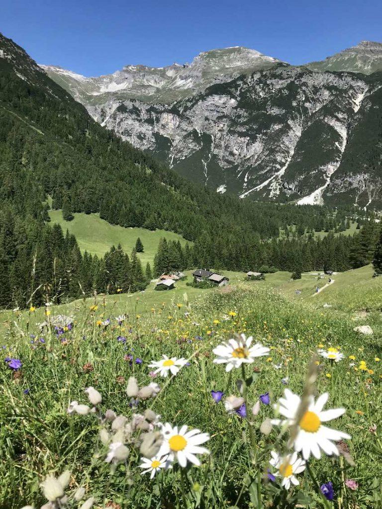 Obernberger See Wanderung - über die Almwiesen