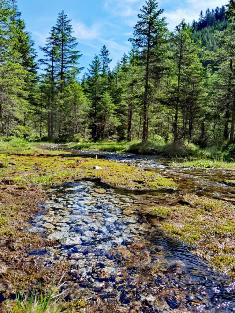 Berauschend schöne Natur im Obernbergtal am Brenner